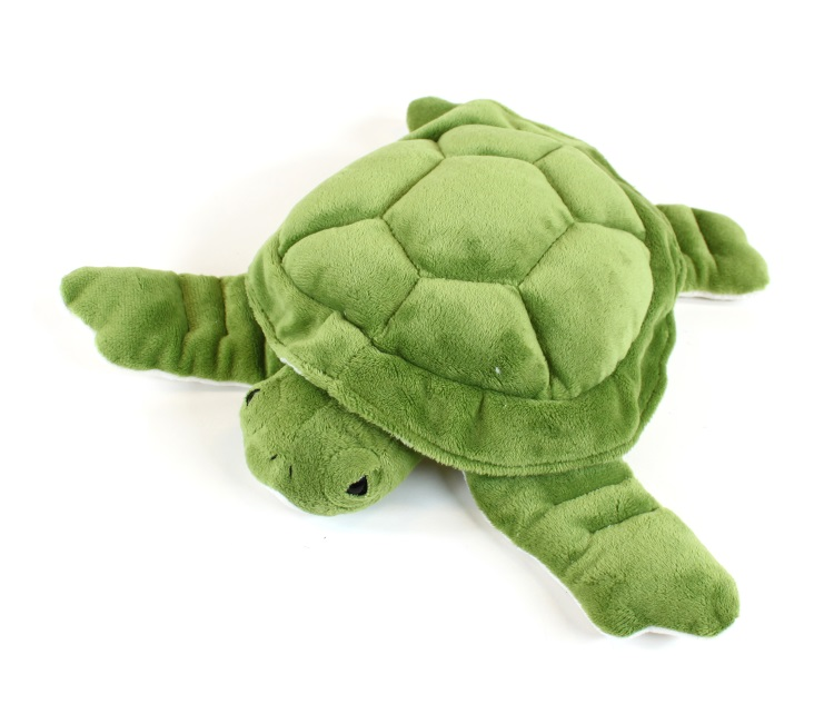 carpisa-kornjaca