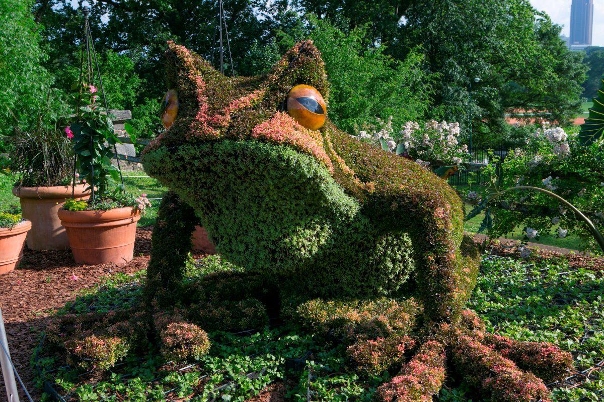 Botanicki vrt